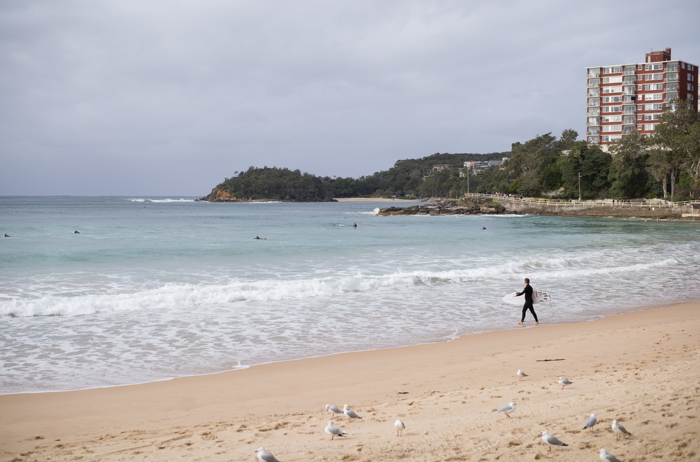 A surfer braving the chilly ocean at Manly Beach